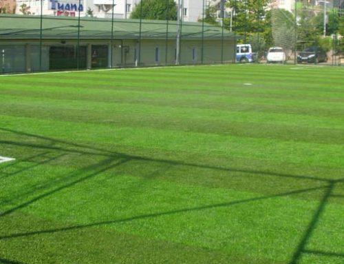 Anahtar Teslim Suni Çim Futbol Saha Yapımı