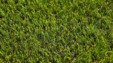 Kuzey Sports ms pro futbol halı saha çim 03